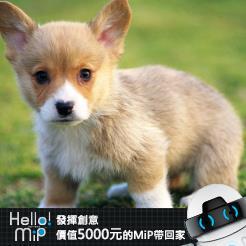 【HELLO MiP】神人級創意玩法大募集! yuyu