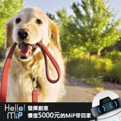 【HELLO MiP】神人級創意玩法大募集! 李威逸