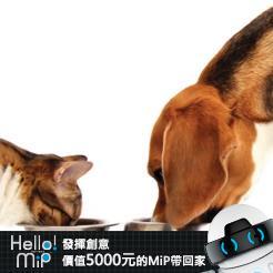 【HELLO MiP】神人級創意玩法大募集! LiouKakie