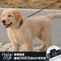 【HELLO MiP】神人級創意玩法大募集! 華 李