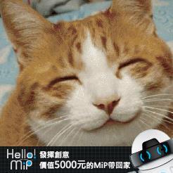 【HELLO MiP】神人級創意玩法大募集! 緹 花