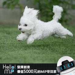 【HELLO MiP】神人級創意玩法大募集! 星 李
