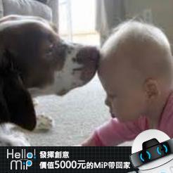 【HELLO MiP】神人級創意玩法大募集! Arny Chen