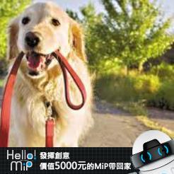 【HELLO MiP】神人級創意玩法大募集! 正倫 吳