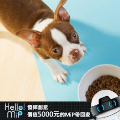 【HELLO MiP】神人級創意玩法大募集! Kevin Huang