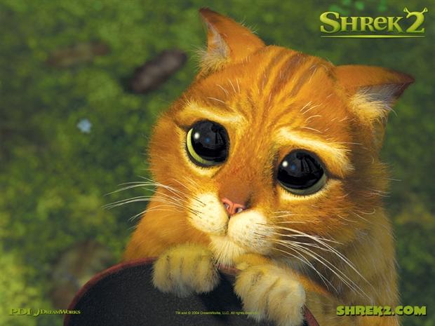 [  最爱的理由  ] 我超爱的哆啦a梦,一直陪伴我长大,我爱他可爱.图片