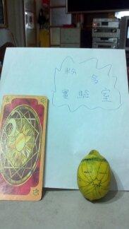 【粉多航海王】惡魔果實實驗室 際威 羅