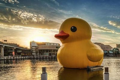 【粉多小旅行】基鴨同隆-黃色小鴨暢遊基隆推薦路線 瑞凡 翁