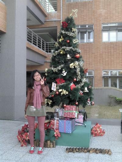 【粉多聖誕快樂】2014 全台聖誕樹大蒐集 維良 許