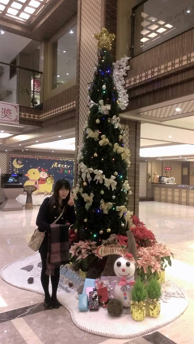 【粉多聖誕快樂】2014 全台聖誕樹大蒐集 碧吟 許