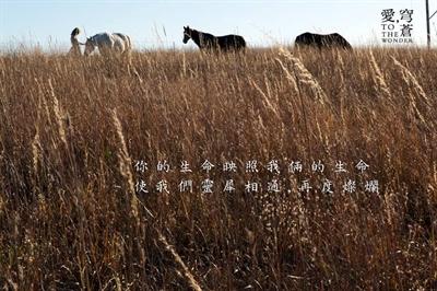 【愛,穹蒼】關於那些愛與被愛的繾綣絮語 HaddyHuang