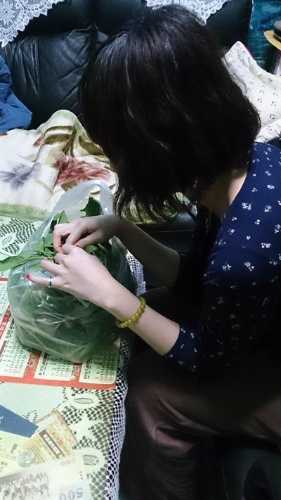 【大運99超級任務】06-媽媽做年夜飯 熊熊 汪