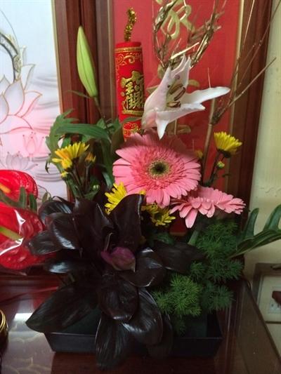 【大運99超級任務】27-新年花盆 楊 曉利