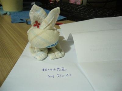 【粉多兔寶寶】DIY!看手巧不巧 DoKo