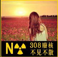 反核大遊行-換大頭貼求光明  Chen Jack
