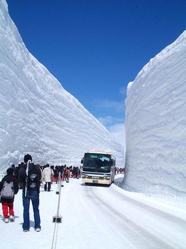 【粉多旅遊通】日本旅遊必去推薦景點 Li Hsu