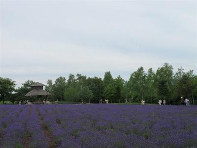 【粉多旅遊通】日本旅遊必去推薦景點 Lunlun Wu