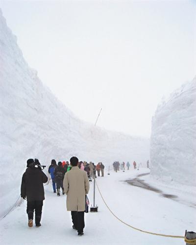 【粉多旅遊通】日本旅遊必去推薦景點 Ruby Wu