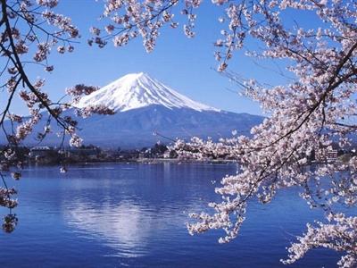 【粉多旅遊通】日本旅遊必去推薦景點 妙綺 陳