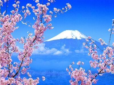 【粉多旅遊通】日本旅遊必去推薦景點 緹 花