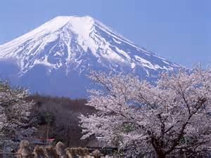 【粉多旅遊通】日本旅遊必去推薦景點 八八王