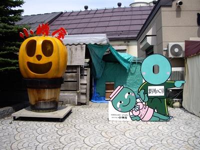 【粉多旅遊通】日本旅遊必去推薦景點 依依 陳