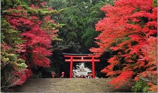 【粉多旅遊通】日本旅遊必去推薦景點 小敏