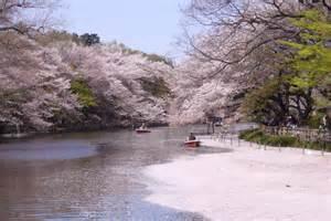 【粉多旅遊通】日本旅遊必去推薦景點 宗舜 許