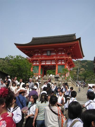 【粉多旅遊通】日本旅遊必去推薦景點 MiNi Lin