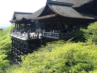 【粉多旅遊通】日本旅遊必去推薦景點 智云 柳