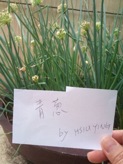 【樂活栽-幸福有機職人】有機當令蔬果學 Juju June