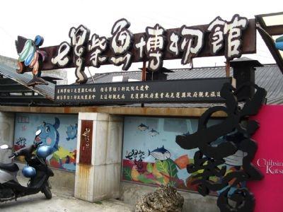 【粉多小旅行】2014金針花季-漫遊花蓮推薦路線 Min Chu