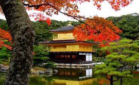 【粉多旅遊】好秋旅行,日本賞楓旅行推薦地點 Chu Flower