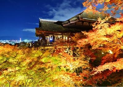 【粉多旅遊】好秋旅行,日本賞楓旅行推薦地點 JerryHsu
