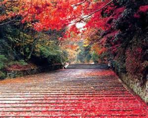 【粉多旅遊】好秋旅行,日本賞楓旅行推薦地點 麗滿 李