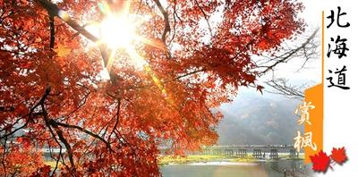 【粉多旅遊】好秋旅行,日本賞楓旅行推薦地點 Chen Shan