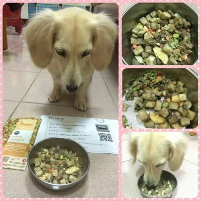 【1分鐘狗狗鮮食-輕寵食】狗不理包子,只理輕寵食 謝 媗