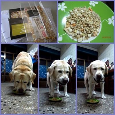 【1分鐘狗狗鮮食-輕寵食】狗不理包子,只理輕寵食 PeyuiPon