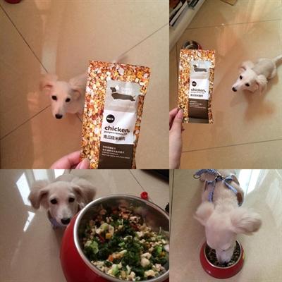 【1分鐘狗狗鮮食-輕寵食】狗不理包子,只理輕寵食 詠 詠