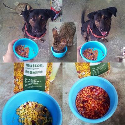 【1分鐘狗狗鮮食-輕寵食】狗不理包子,只理輕寵食 EuniceOu