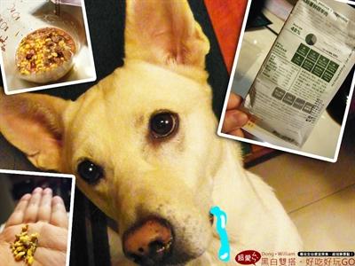 【1分鐘狗狗鮮食-輕寵食】狗不理包子,只理輕寵食 Roy Lin