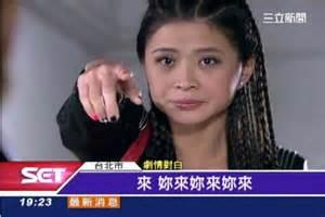 2014年終梗圖大會串 甄甄 蔡