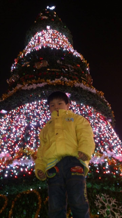 捕捉全台野生聖誕樹 YushanHsu