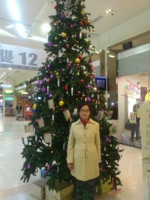 捕捉全台野生聖誕樹 Candy Fu