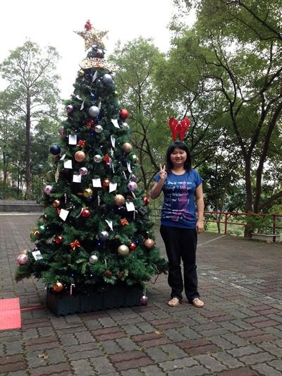 捕捉全台野生聖誕樹 巧詩杜
