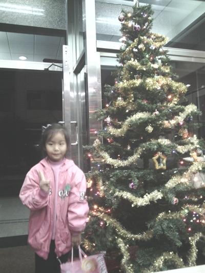 捕捉全台野生聖誕樹 偉 王