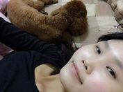 陪睡寵物寶貝大集合 Amy Lai