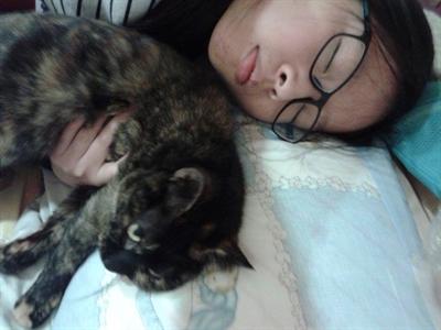 陪睡寵物寶貝大集合 佩菁 羅