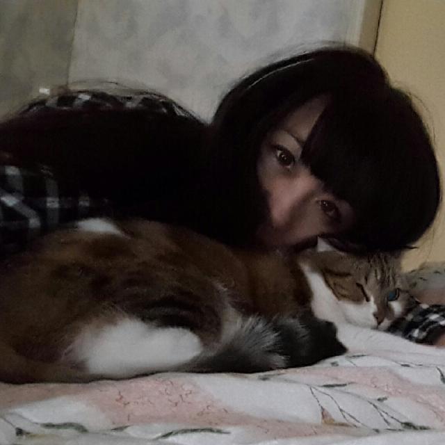 陪睡寵物寶貝大集合  Chu Huang