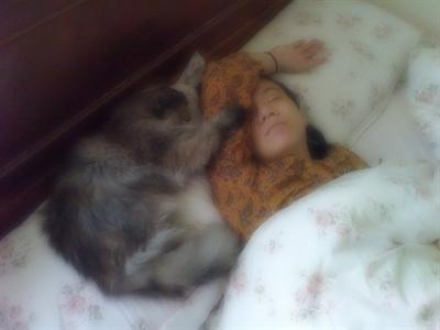 陪睡寵物寶貝大集合 柔柔 郭
